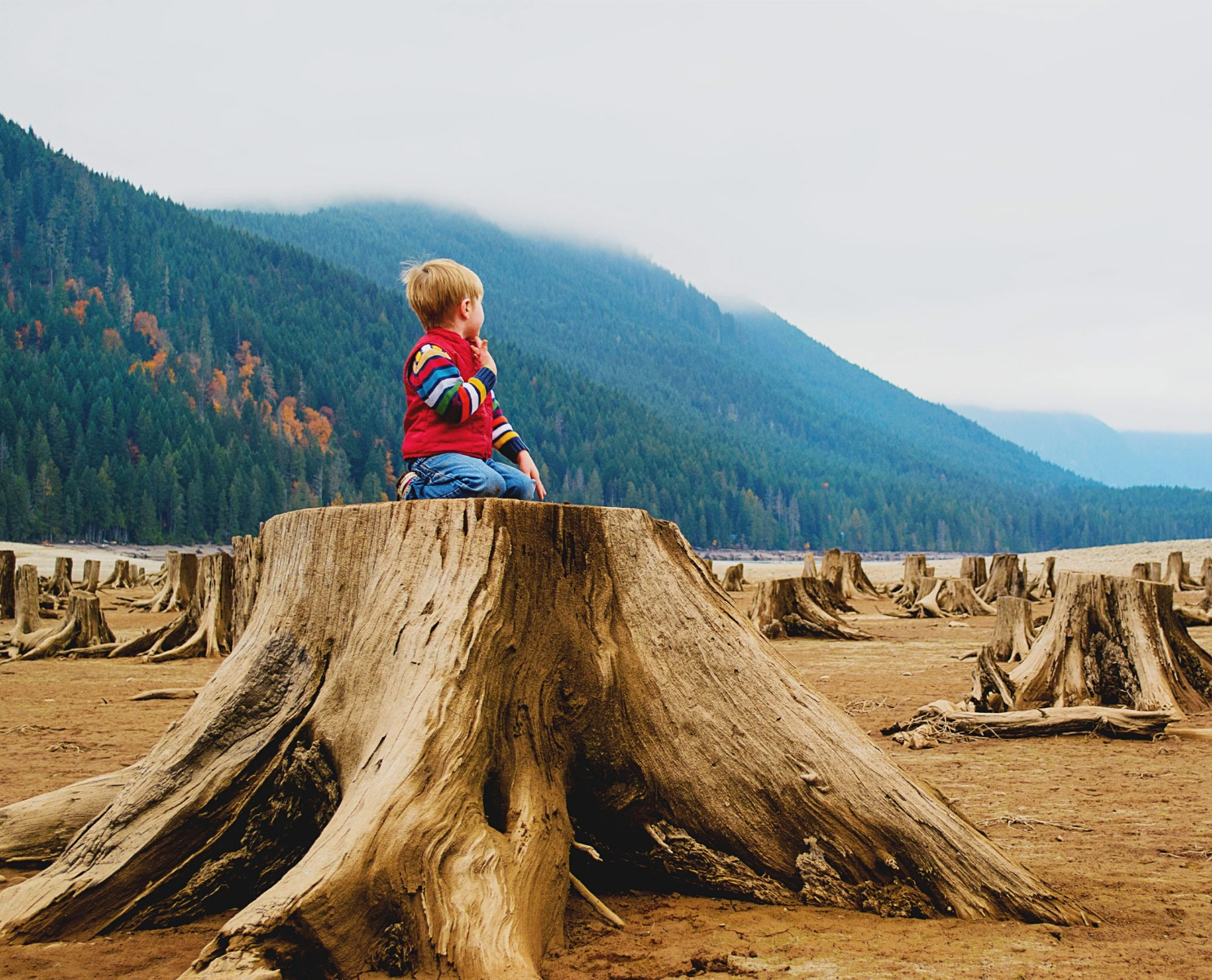 We all know by now that the food system created for us to thrive, is destroying the PLANET. We made it linear while nature's design is circular. Always. That is natures nature. Food production is the biggest contributor to the global climate crisis and the time to act is now. We live in a PARADOX where kids have more power than adults to shift the climate crisis agenda to a global top priority. Yes, the climate crisis is a reality. Yet, we only have one life to live and we want to enjoy it, guilt-free!